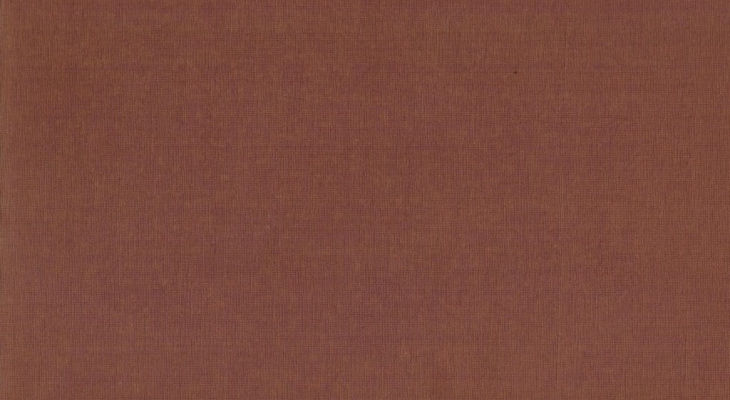 plain brown background1