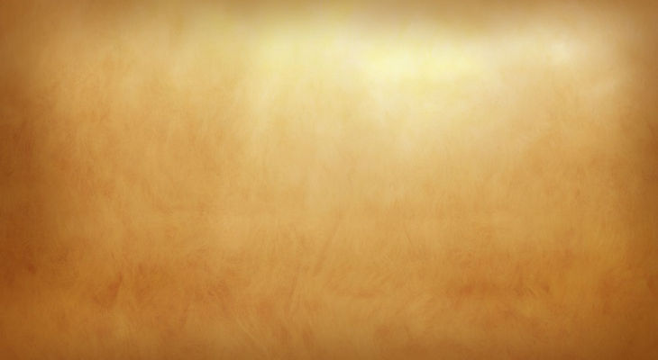 plain brown background2