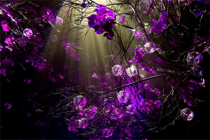purple-spring-background-1
