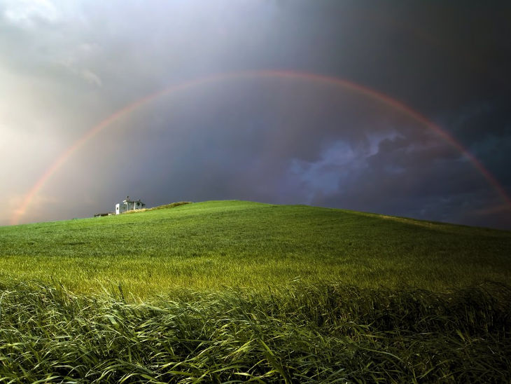 meadow rainbow background