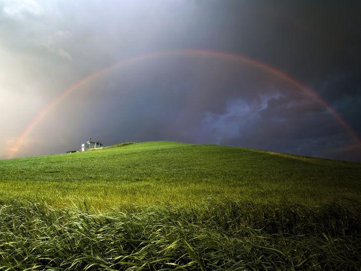 Meadow Rainbow Background
