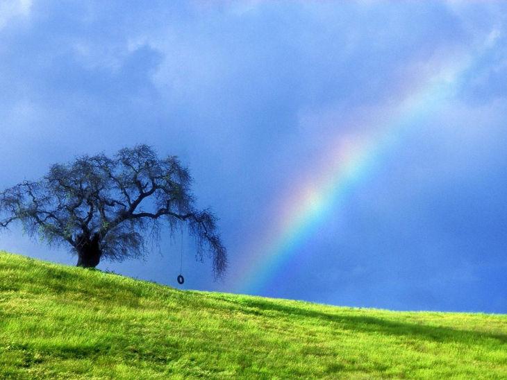 Amazing Rainbow Background