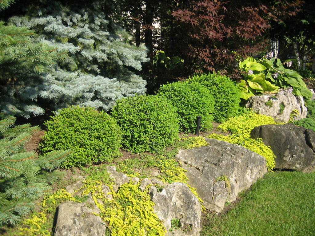 rock garden designs26