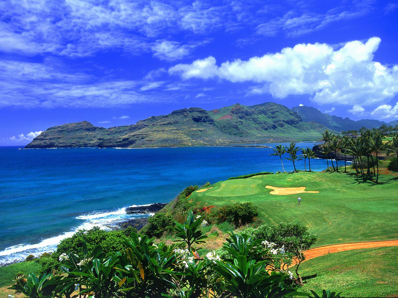 Golf Hawaii Background