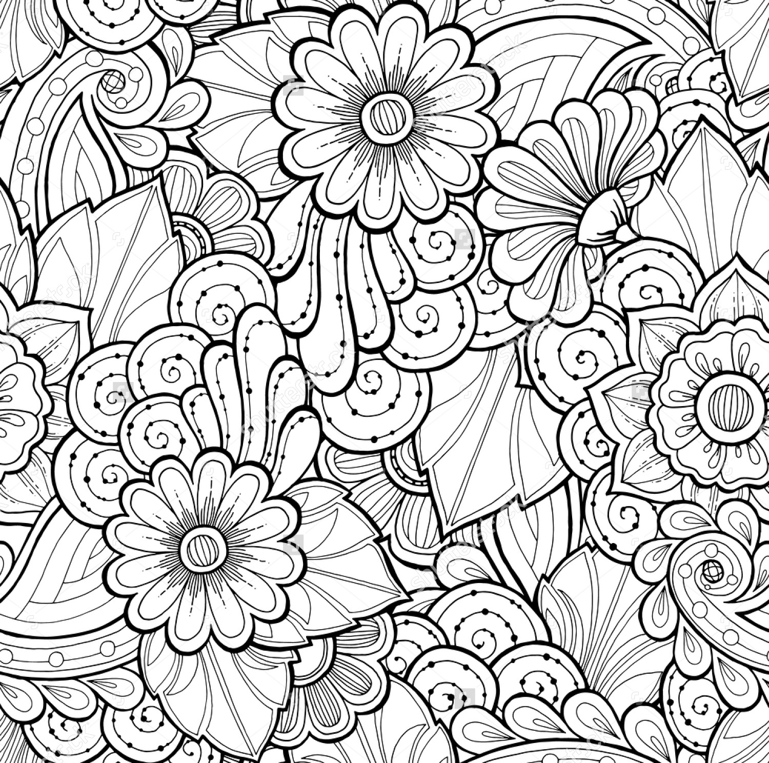 Black and White Paisley Vector