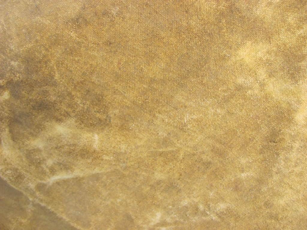 Canvas Texture