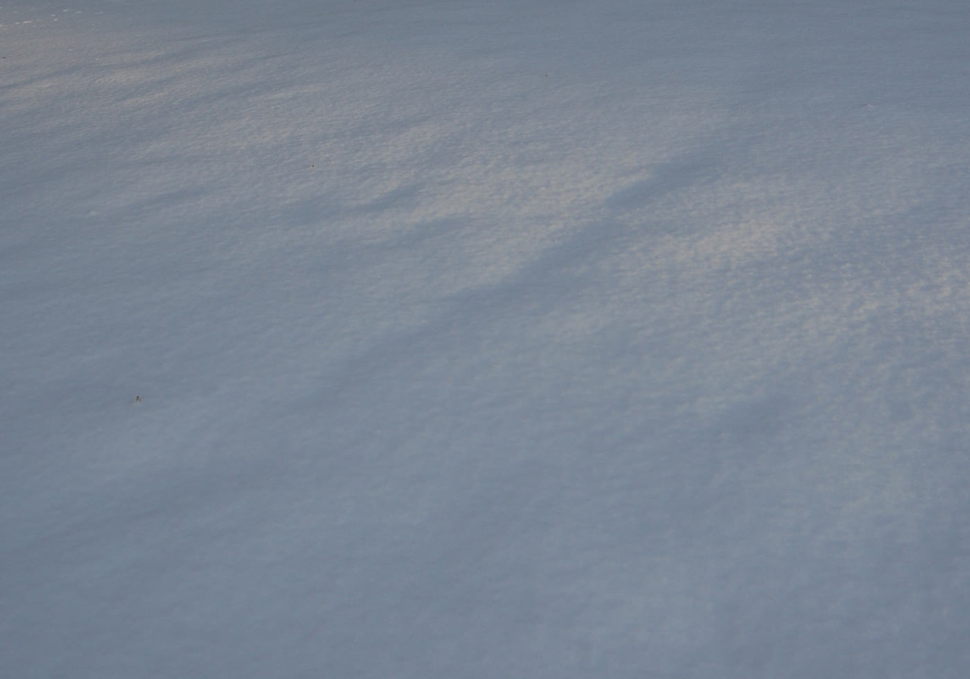 Simple Snow Texture