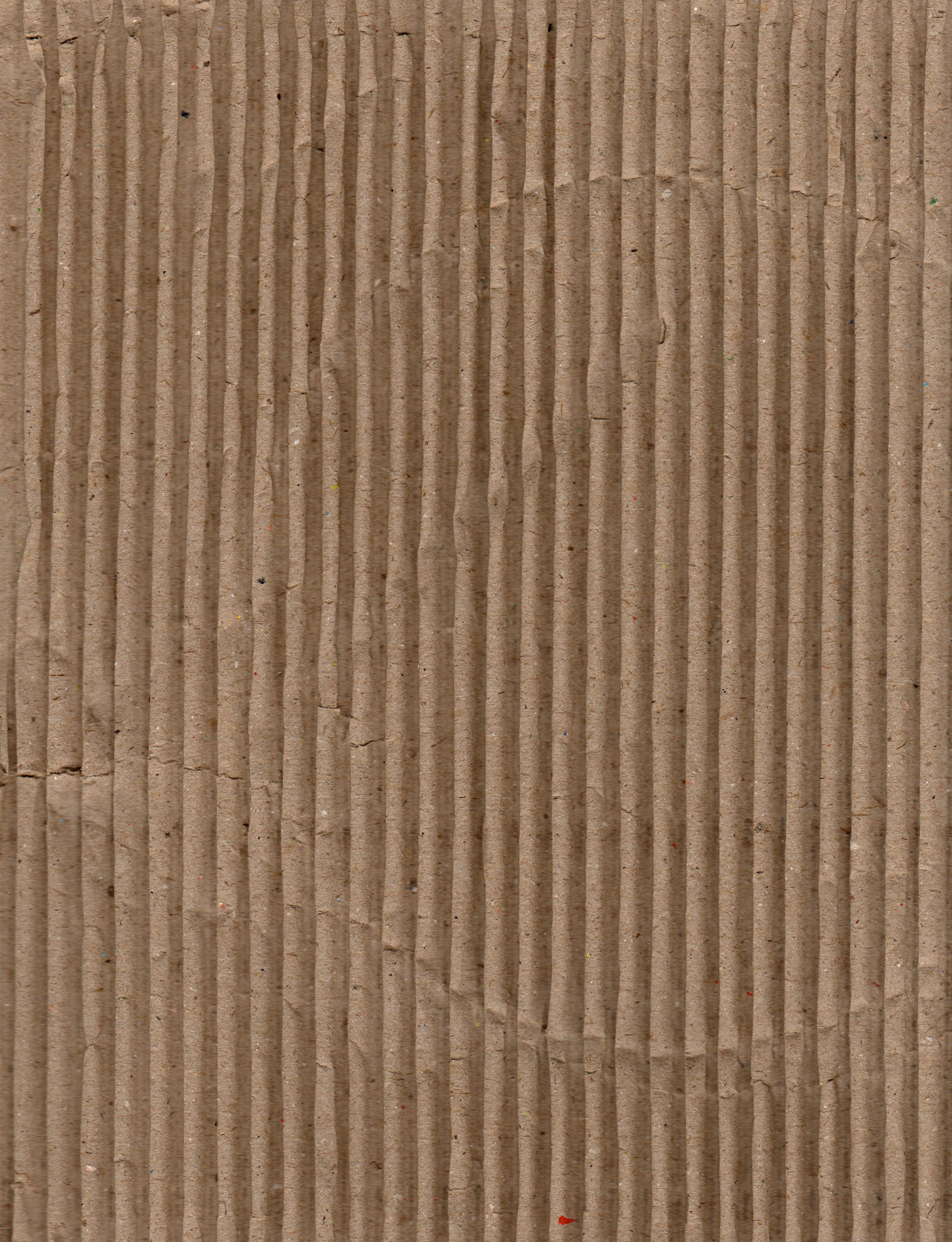lost and taken cardboard texture