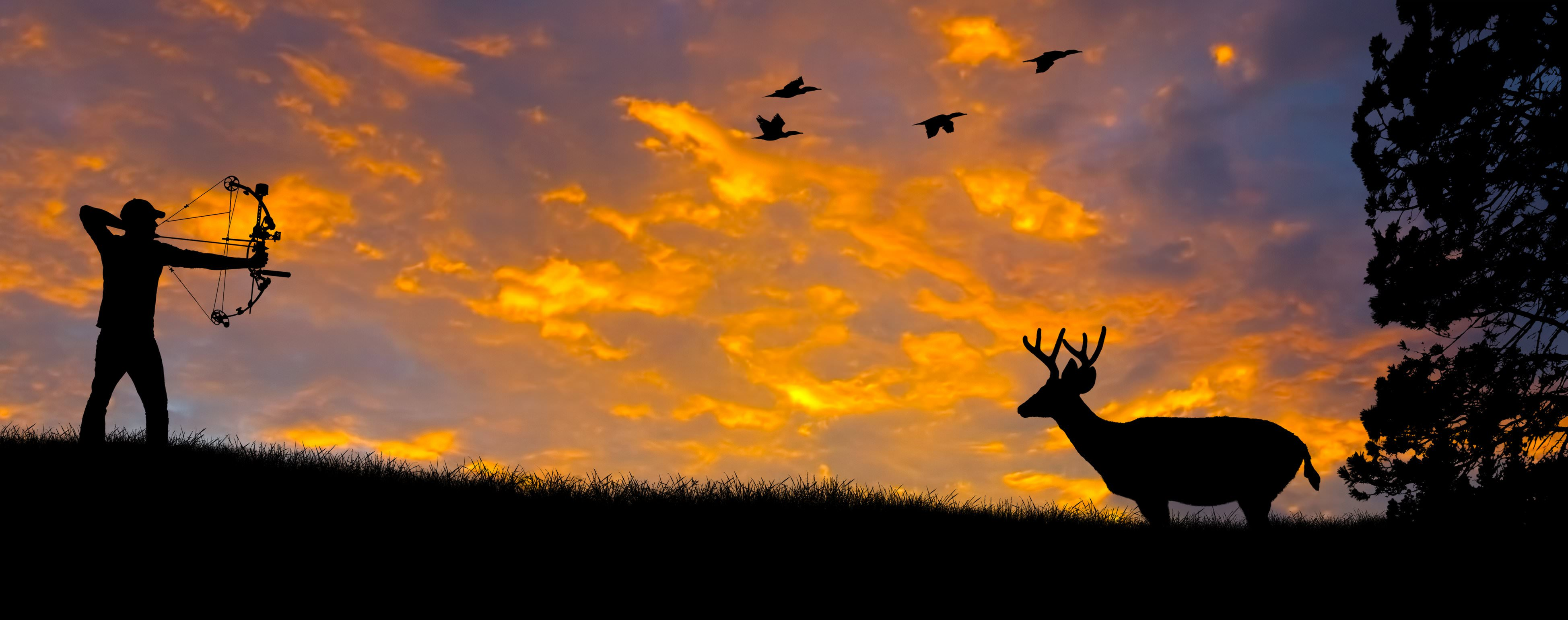 Deer Hunting Background3