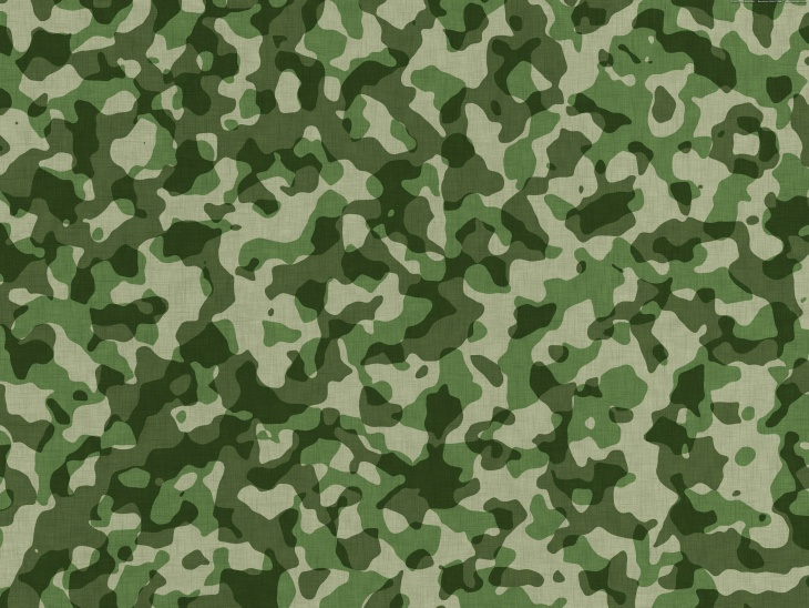 Military Camouflage Vector Pattern