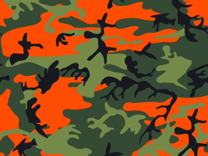 Hunter Orange Camouflage Vector