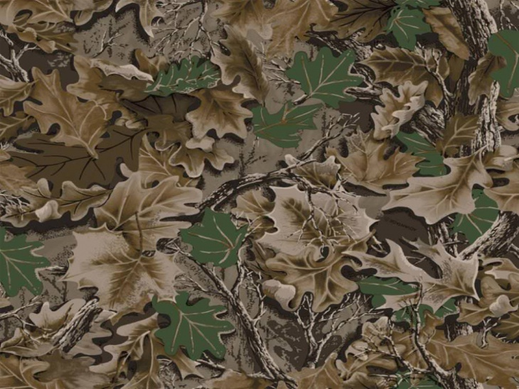 leaves camouflage background