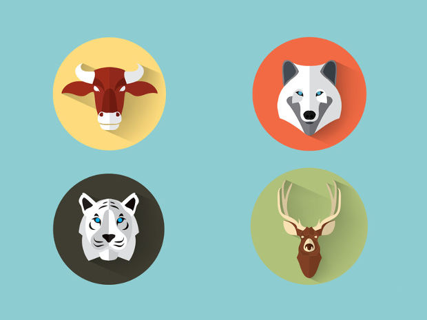 Wild Animal Vector Set