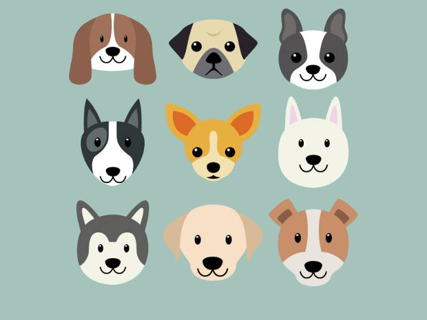 Cute Dog Breed Vector