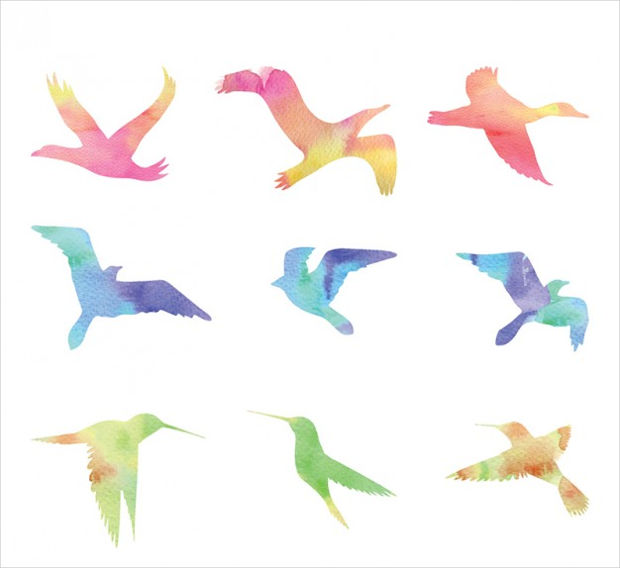 watercolor flying birds vector