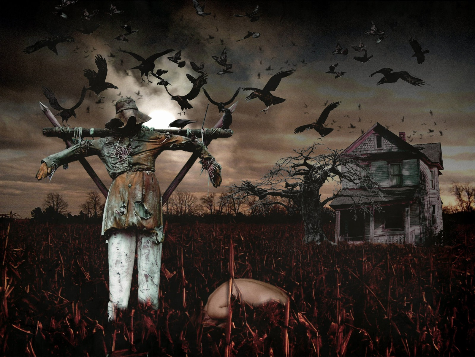 Creepy Scarecrow Background