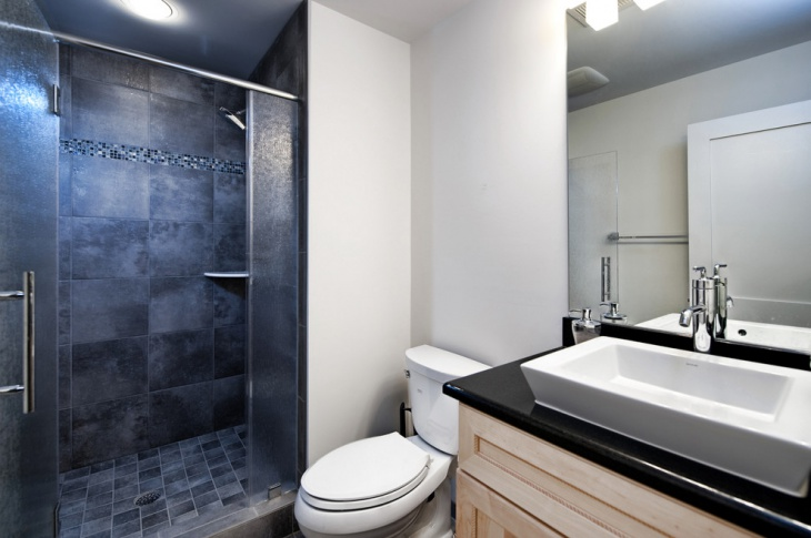 Ashburn Contemporary Basement Bathroom