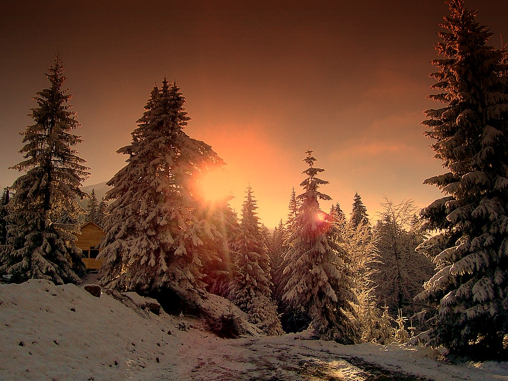 winter sunset background