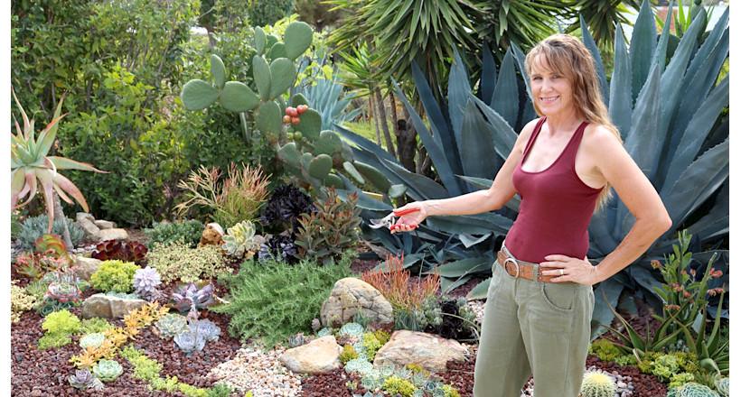 Attrayant 21+ Succulent Garden Designs
