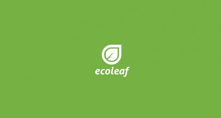 Beautiful Leaf Logo Designs