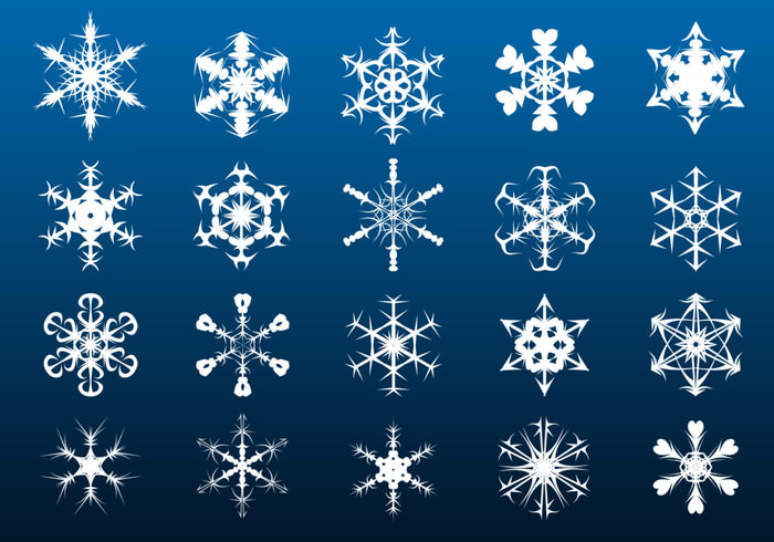 elegant snowflake brushes