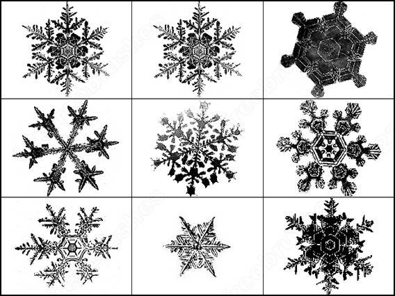 snowflake brushes3