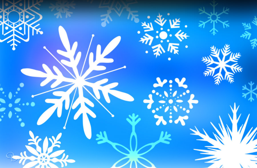 snowflake vector brushes1