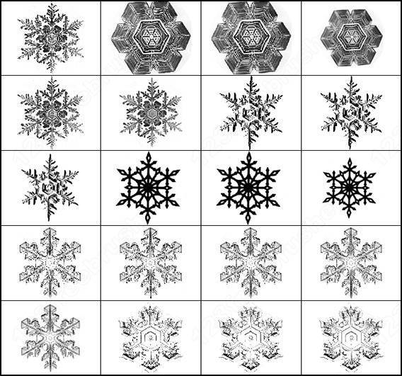 Snowflake Brussh