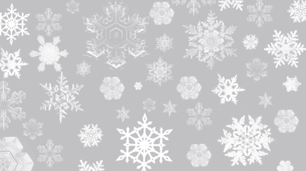 snowflake brushes5