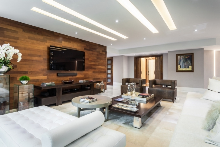 Wood Accent Wall Living Room Picture