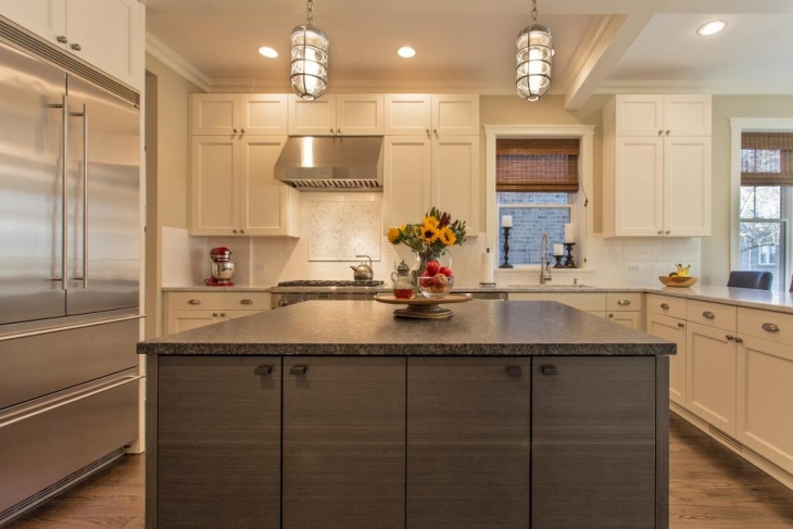 stylish transitional kitchen