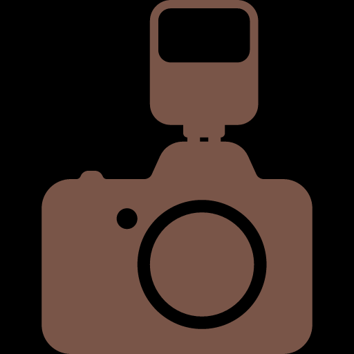Photo Camera with Flash Icon