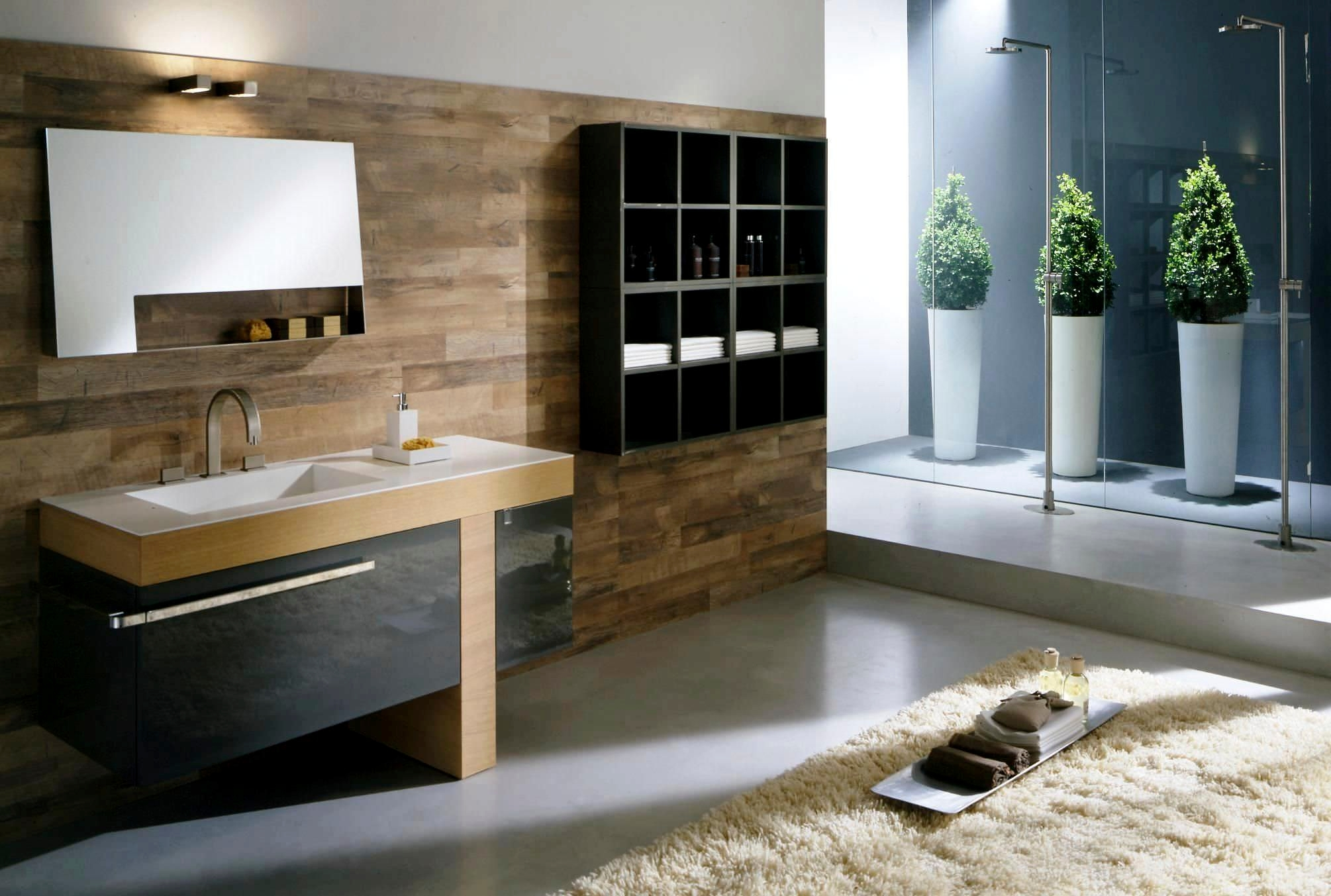 Modern Bathroom Design Ideas For