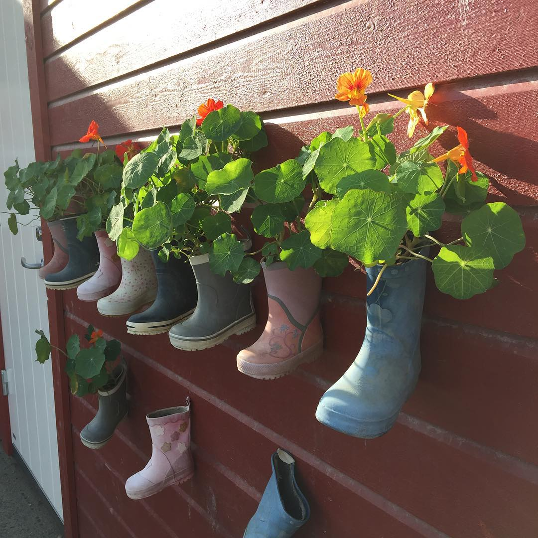 Awesome Gumboot Garden Ideas