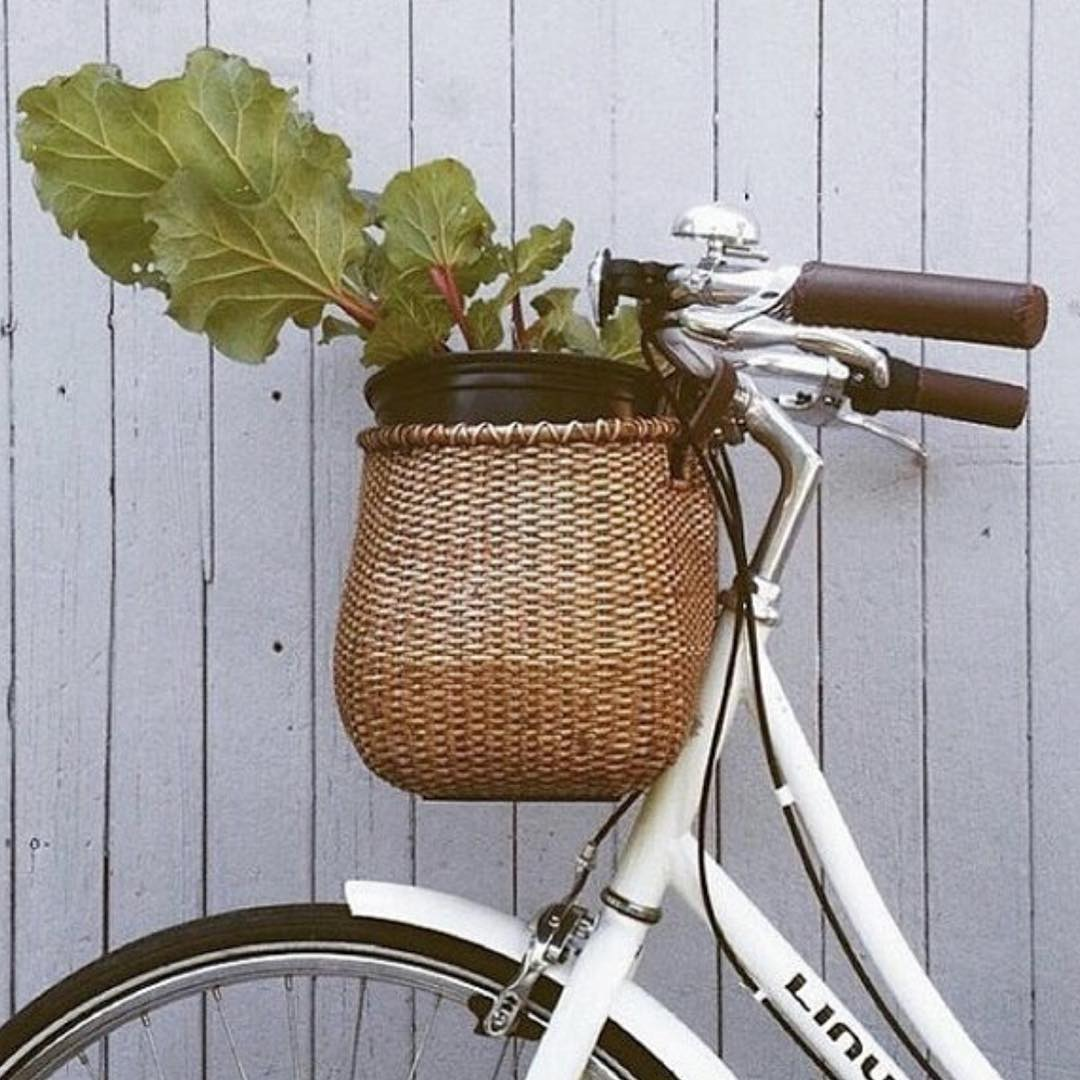 Beautiful Bicycle Flower Pot