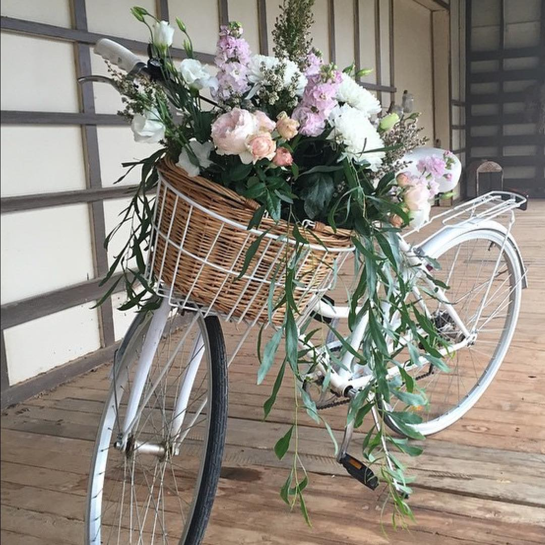 Lovely Bicycle Flower Pot