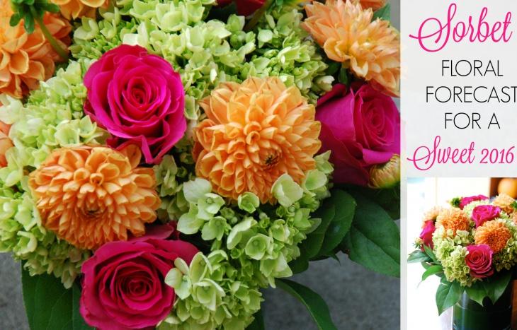 sorbet floral