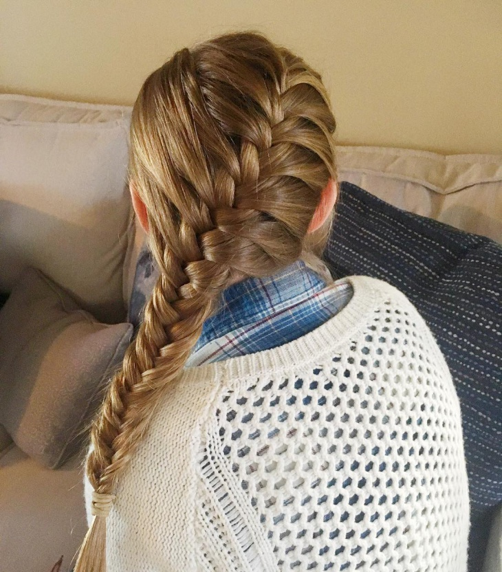 french fishtail braided hairstyle