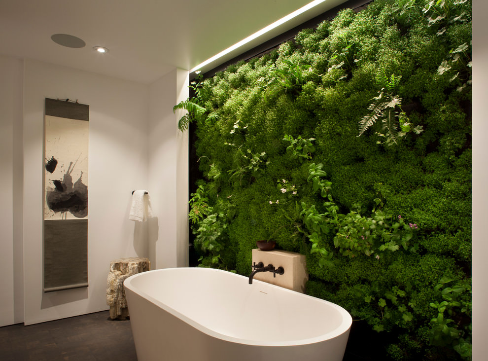 contemporary bathroom indoor garden