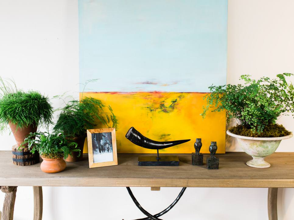 ferns and indoor plants on console table