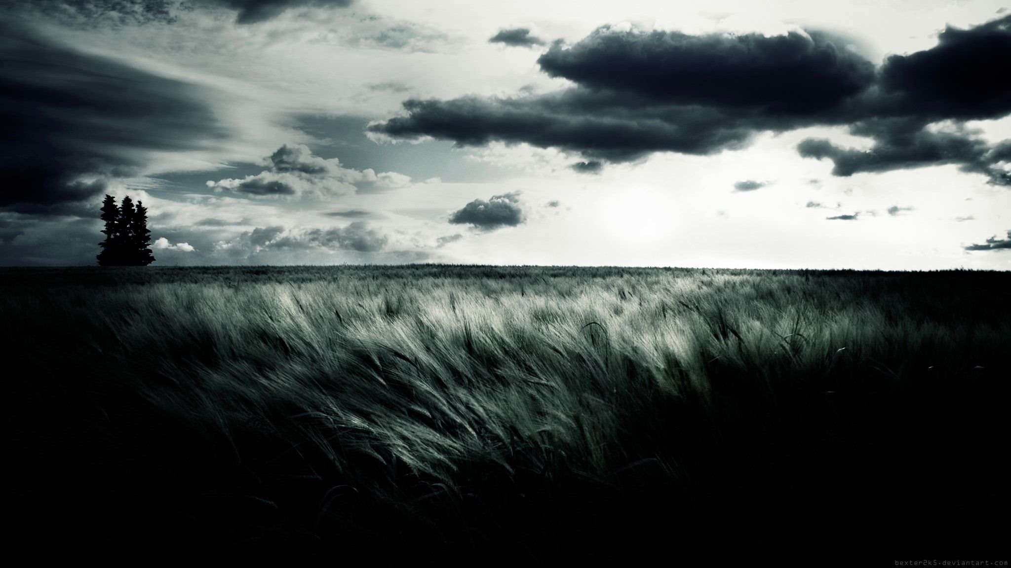 black and white landscape background