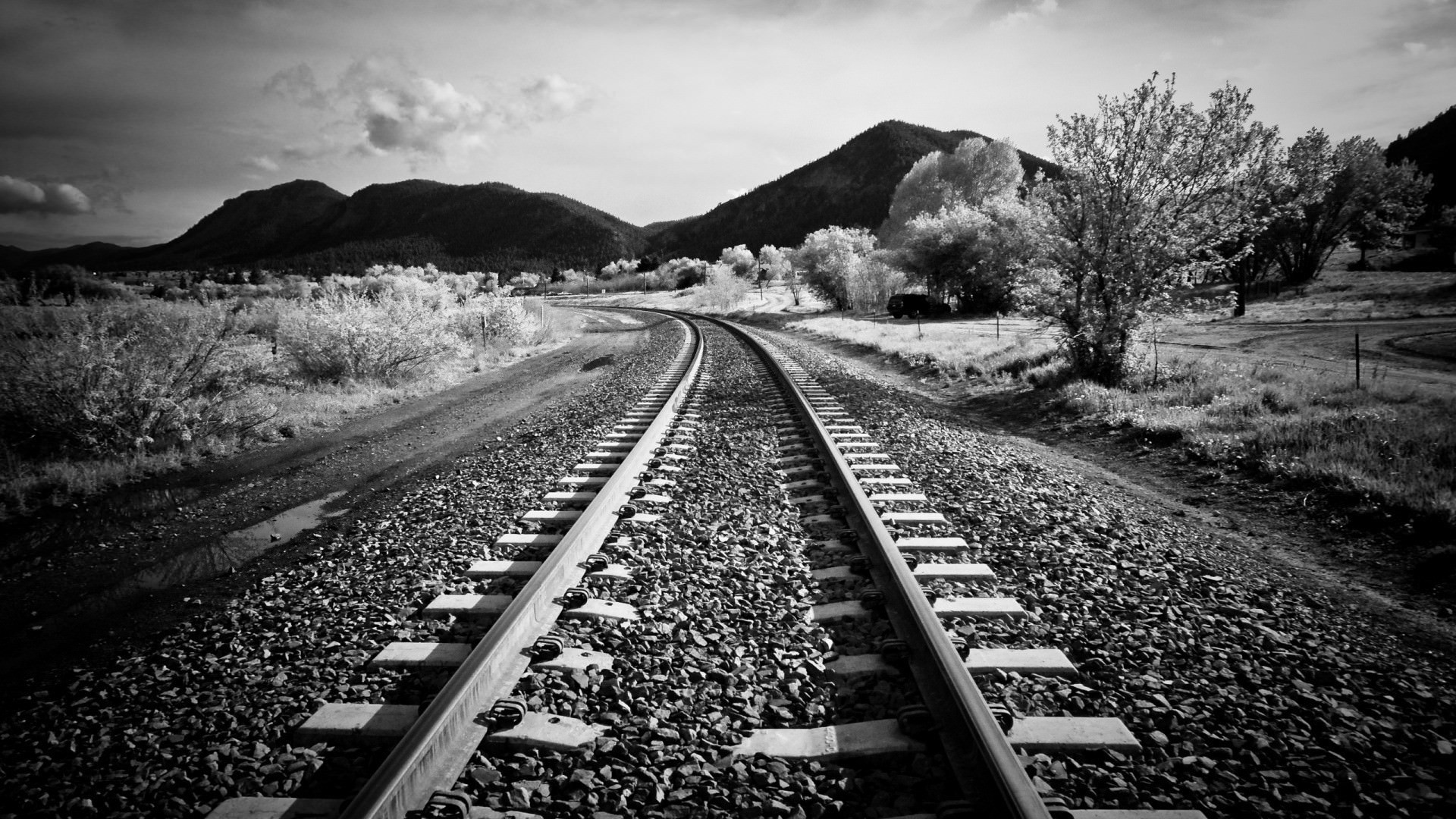 Black and White Track Background