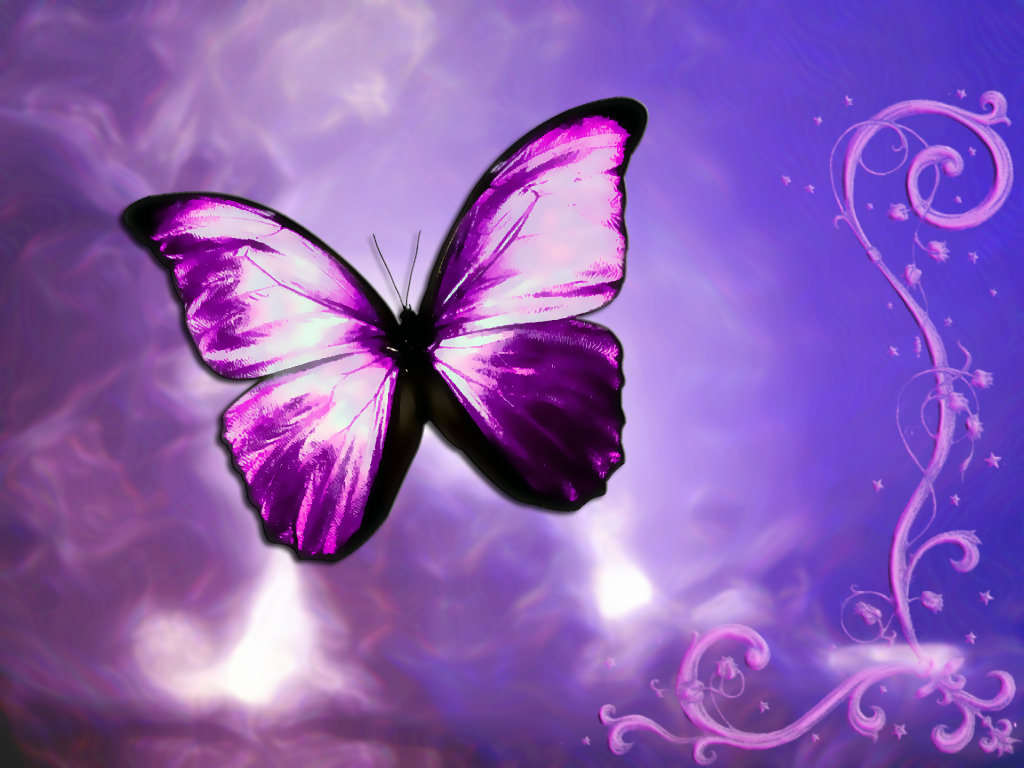 purple butterfly background