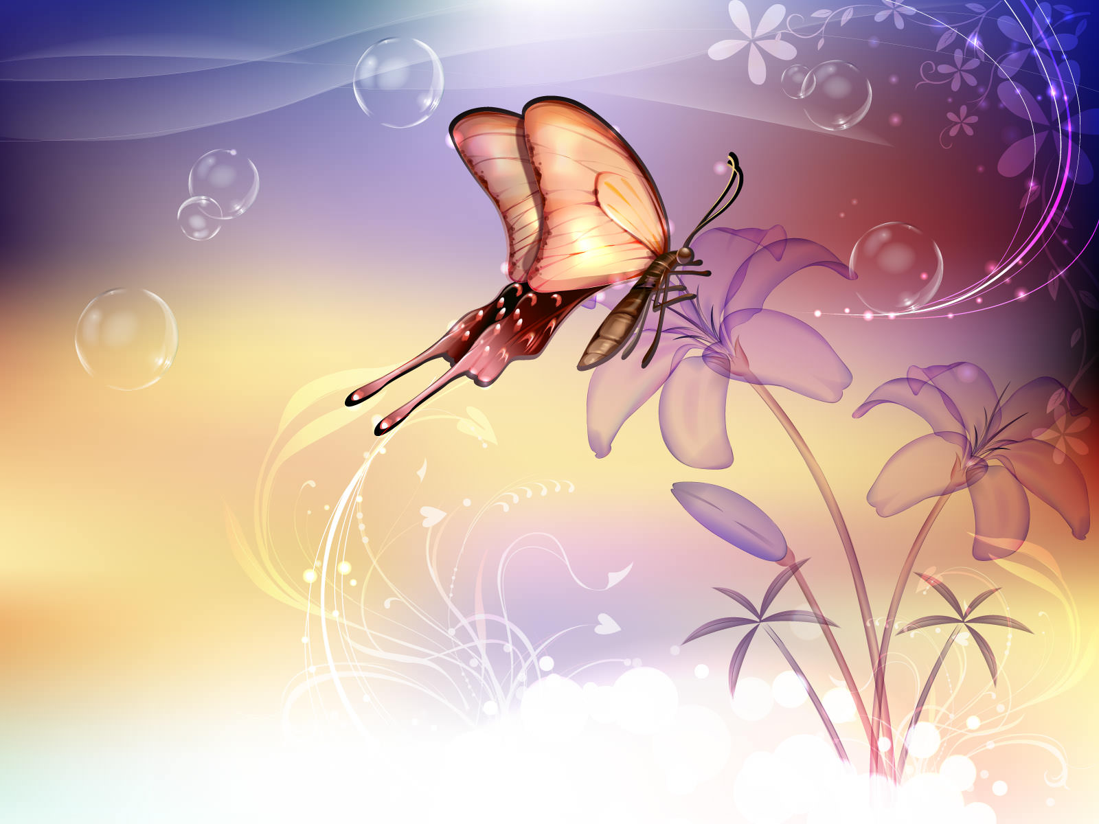 animated butterfly background1