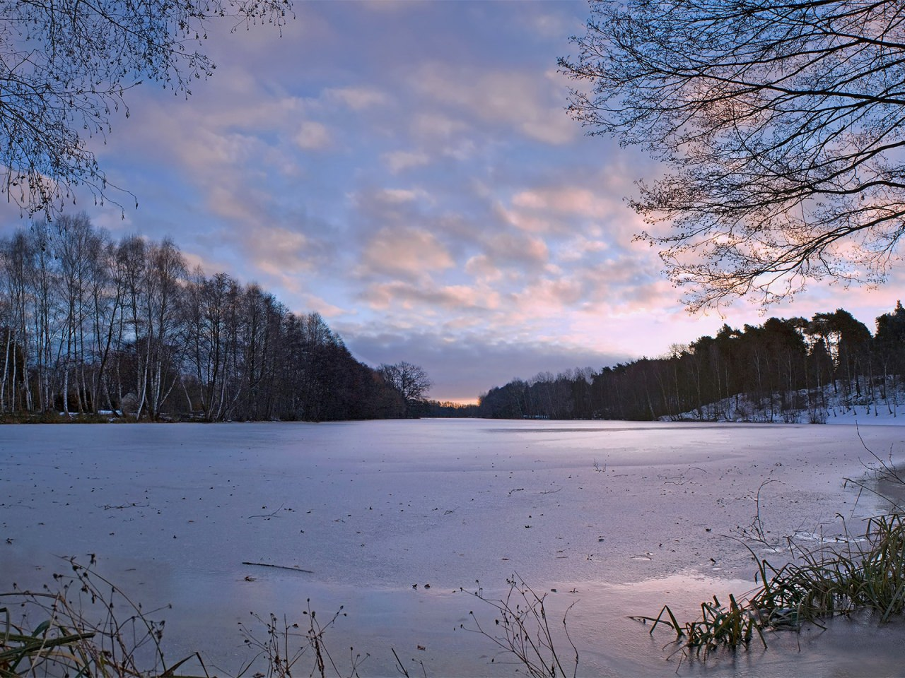 Frozen Pond Background