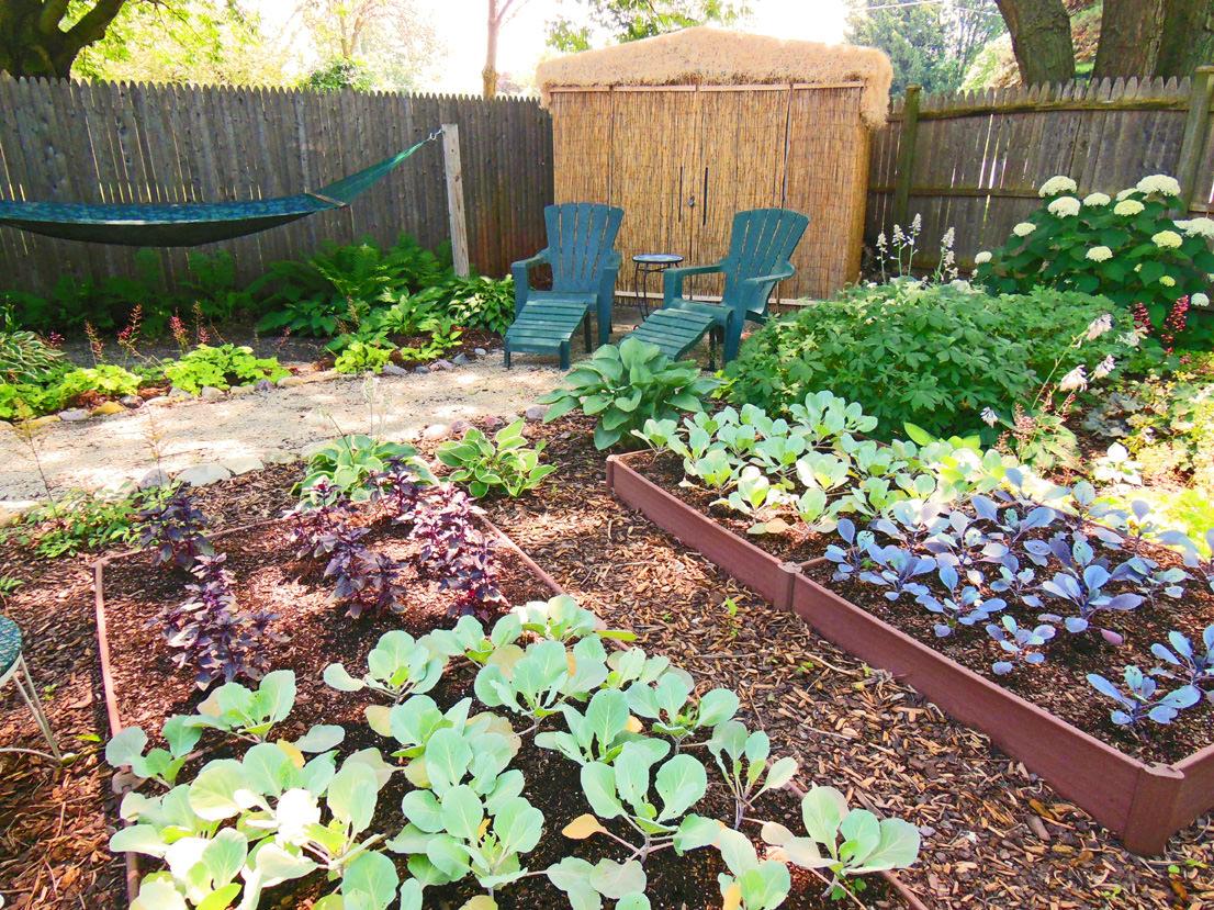shade garden design vegetable color