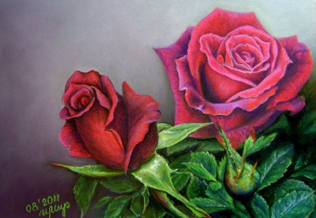 red rose flower drawing1