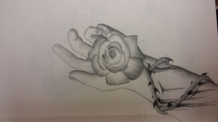 rose thorns in hand drawing