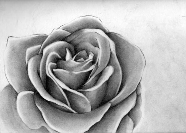 Charcoal Rose Art