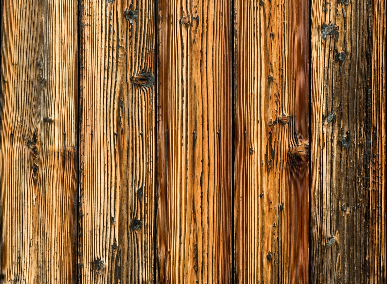 Wood Vector Background
